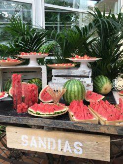 samanthacatering_desayuno_frutas